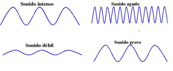 DOCENTECA - El oído, explicación, guía de trabajo y respuestas